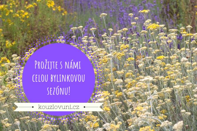 Prožijte s námi bylinkovou sezónu díky programu Bylinky našich babiček
